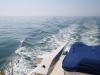 Rare, glassy, flat seas