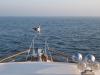 Heading north, destination Swanwick Marina