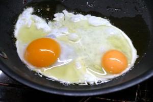 Duck and chicken egg? No comparison
