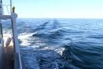 A lovely calm sea for cruising