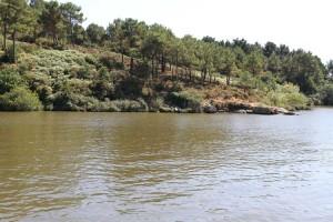La Vilaine river between Arzal and La Roche Bernard