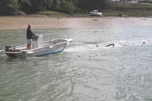 Spring tides wash debris down river