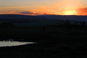 The evening sunset